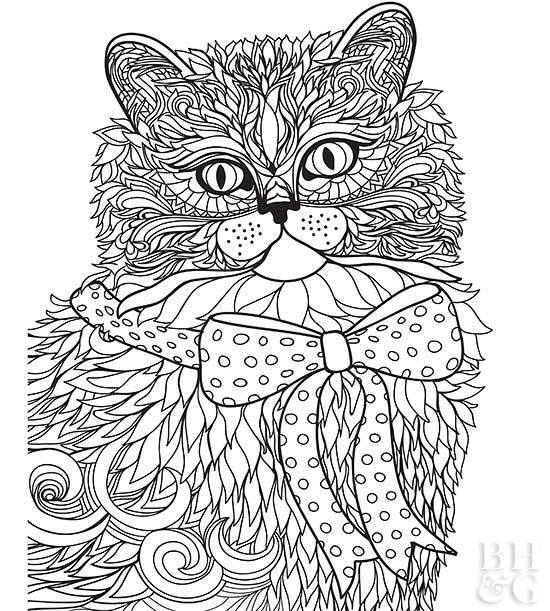 Pictures of Furry Friends to Color | Animal coloring pages ...