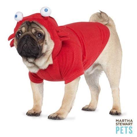 dog crab costume
