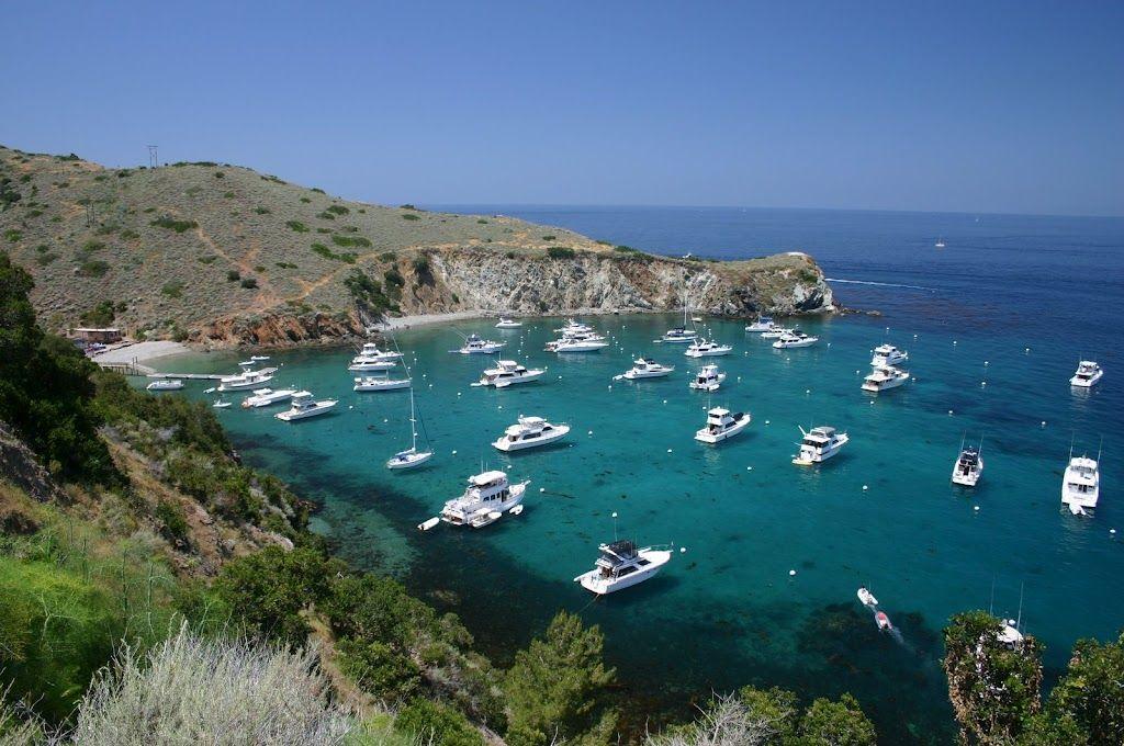 Cherry Cove Catalina Island I Will Always Love My Home Away From Home Outdoor Catalina Island Catalina