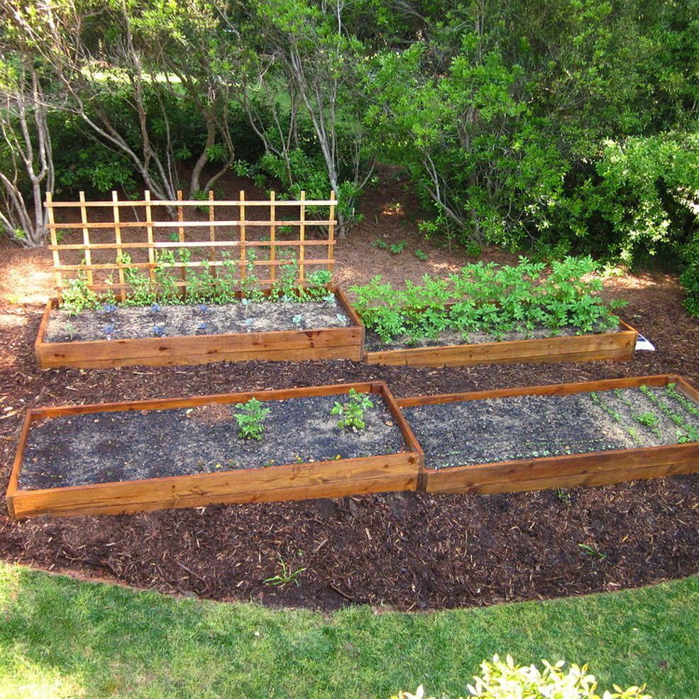 Raised Beds on A Slope Sloped garden, Vegetable garden