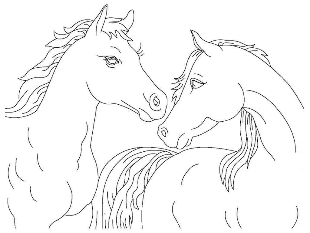 Realistic Horse Coloring Pages Printable Realistic Horse