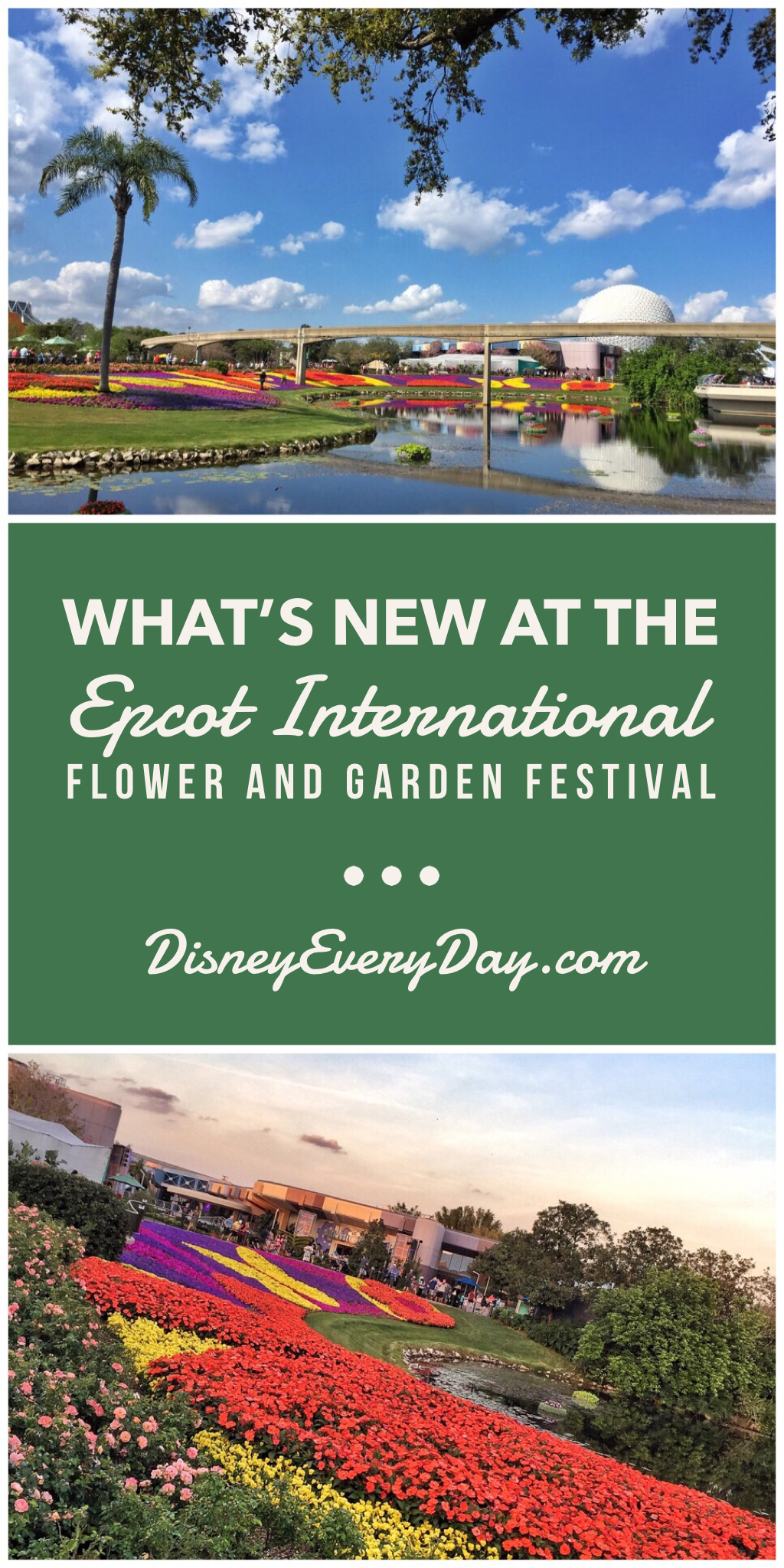What's New at the 2019 Epcot International Flower and