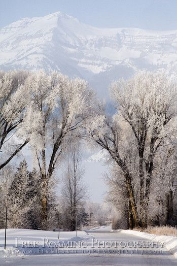 Jackson Hole, Wyoming. Beautiful in the winter and the place for cowboys to ski.
