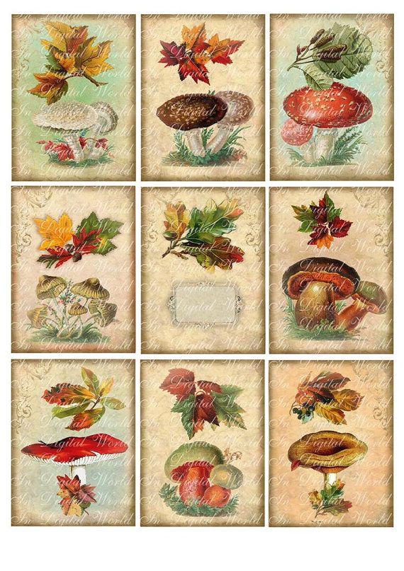 Digital Collage Sheet Vintage Fall Autumn Mushrooms Cards Tags Bookmarks Printable Download