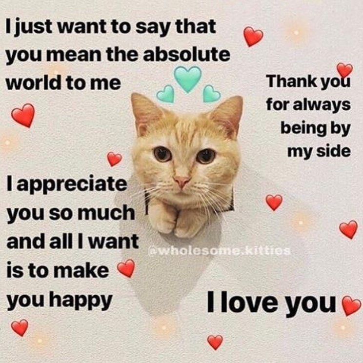 Pin By Tii On Yus Love You Meme Flirty Memes Cute Love Memes