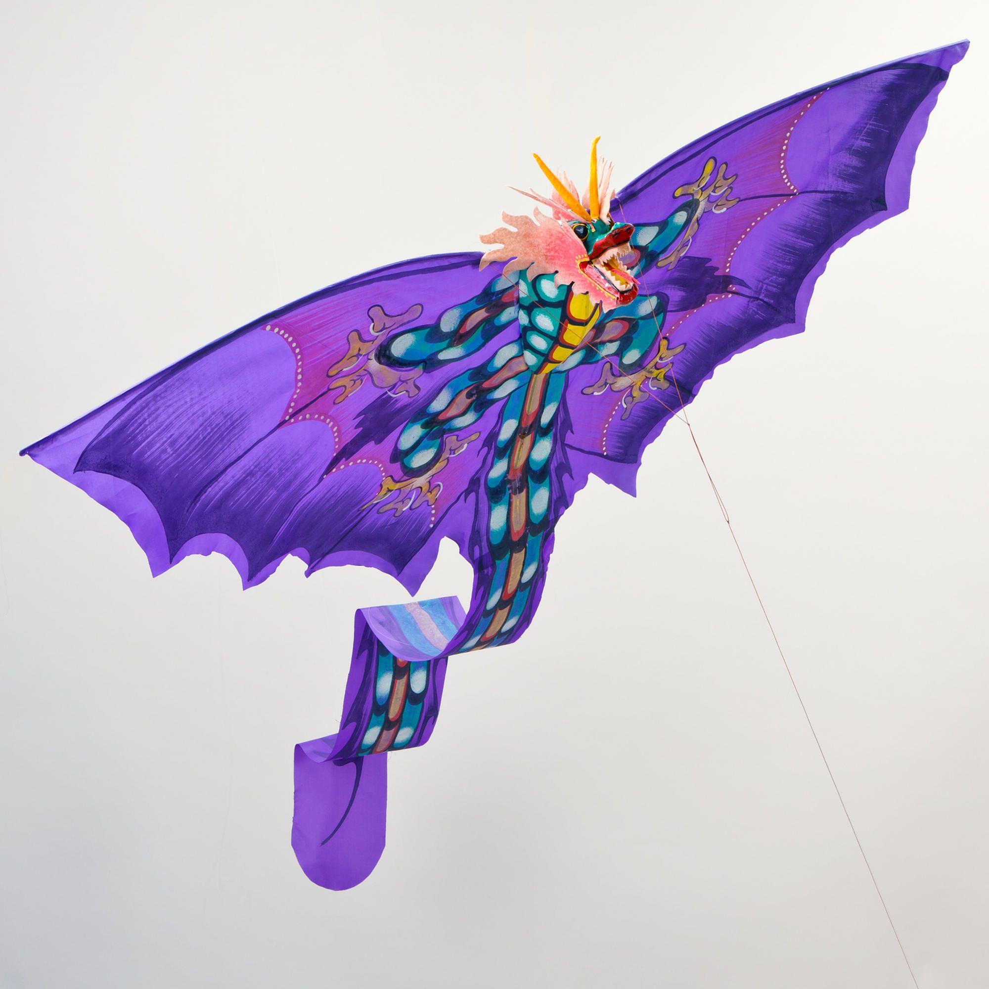 Halloween kite design Dragon kite, Go fly a kite, Kite
