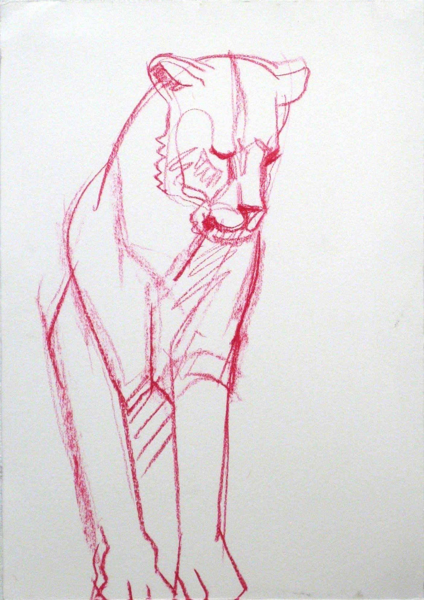 Lejon, krita, 56x38cm