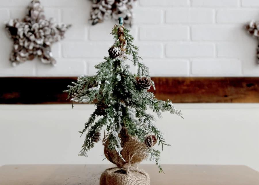 Alternatywa Dla Choinki 10 Pomyslow Na Ozdoby Z Roslin Zielony Ogrodek Christmas Tree Kitchen Cleaning Hacks Xmas Tree