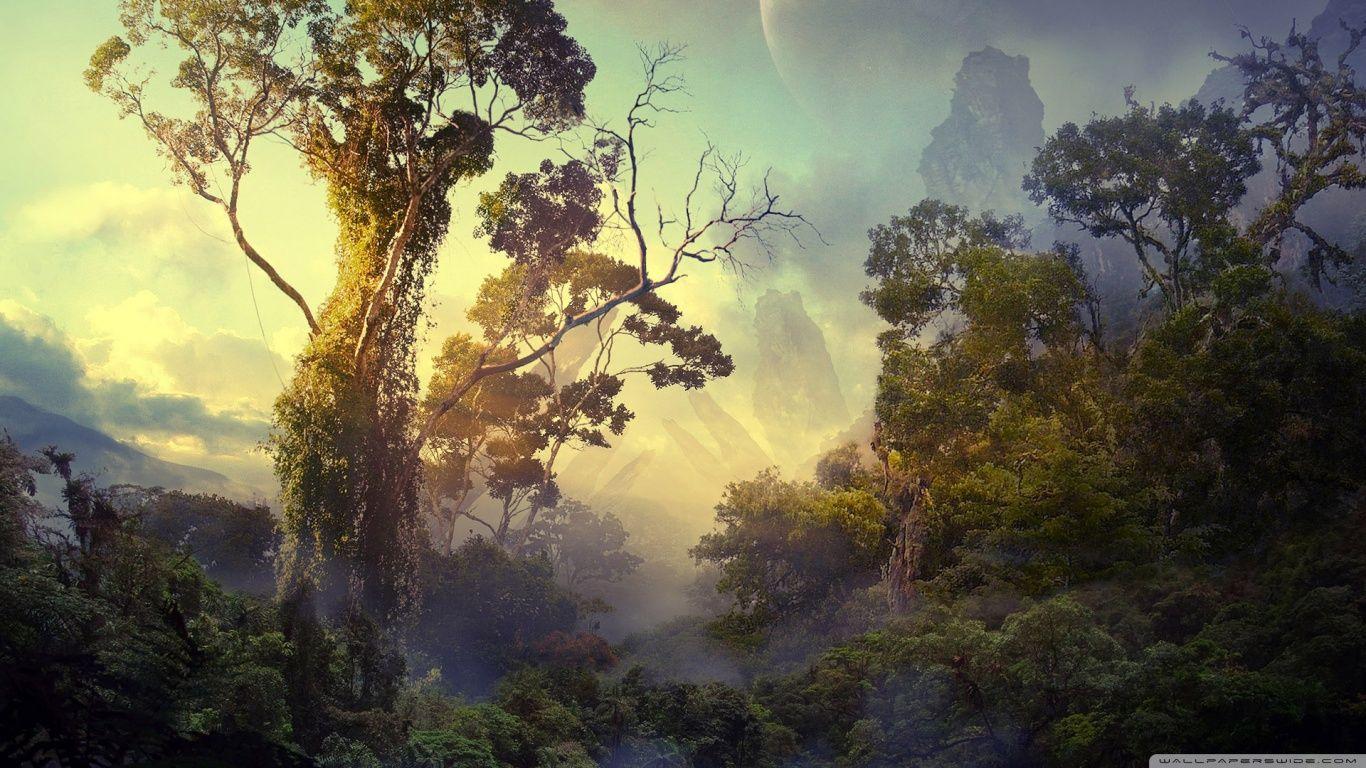 Hd wallpaper jungle - Lovely Jungle Wallpaper Hd Images New Photos Free Download Hd Wallpapers Pinterest Wallpaper