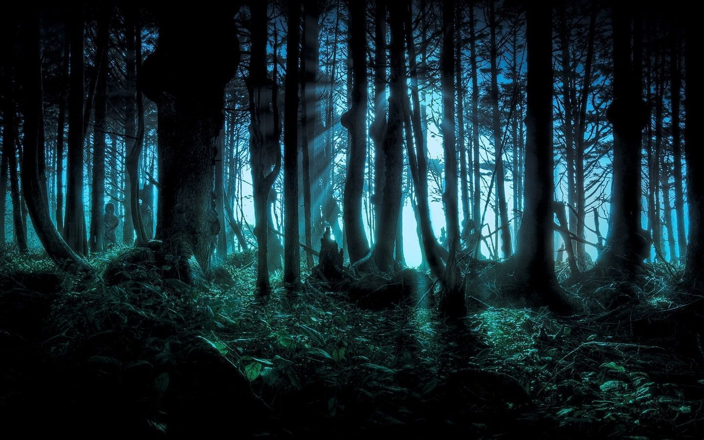Images For Anime Forest Background Wald Tapete Mystischer Wald Dunklen Wald