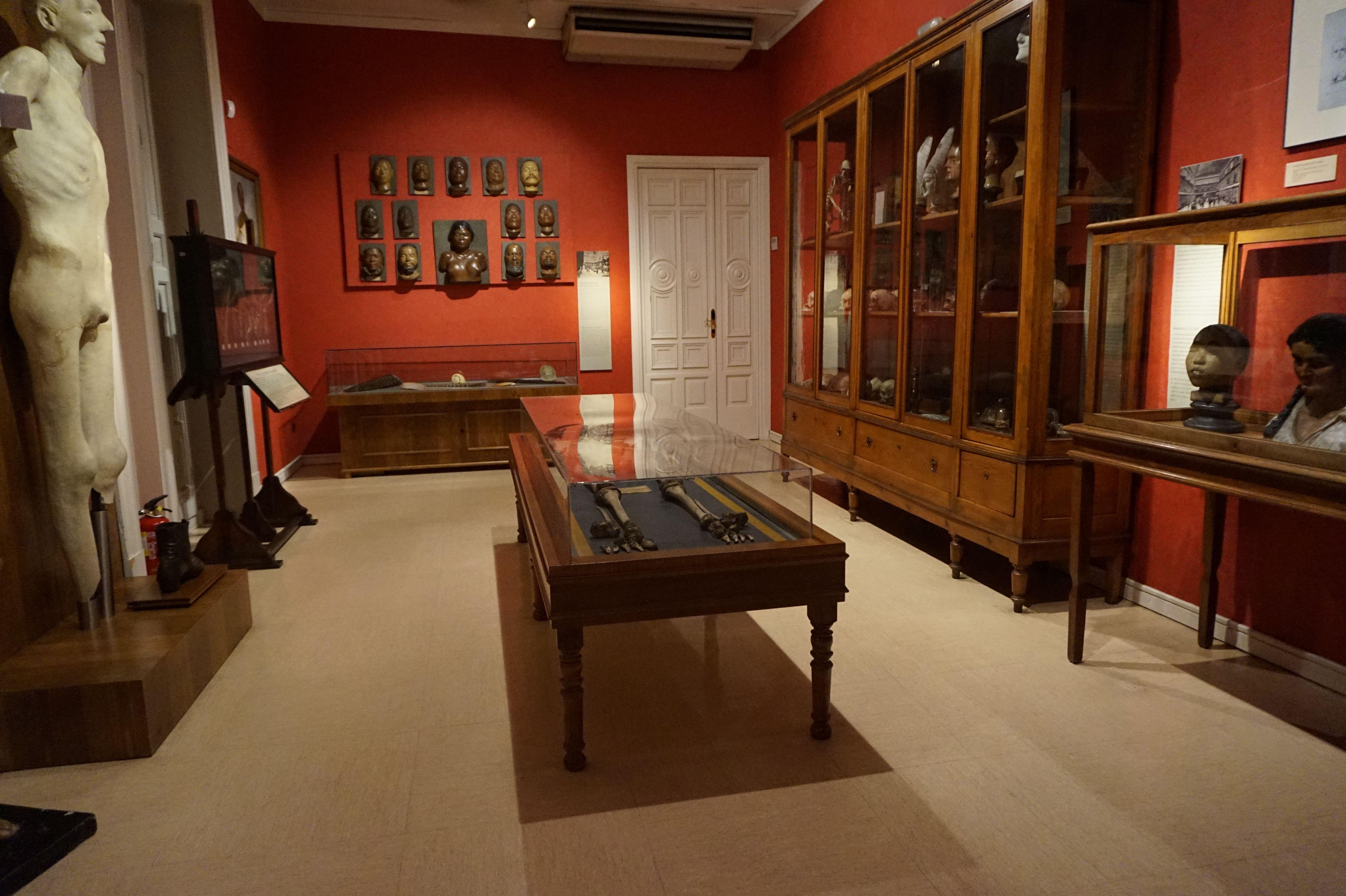 Museo de Antropología. Madrid