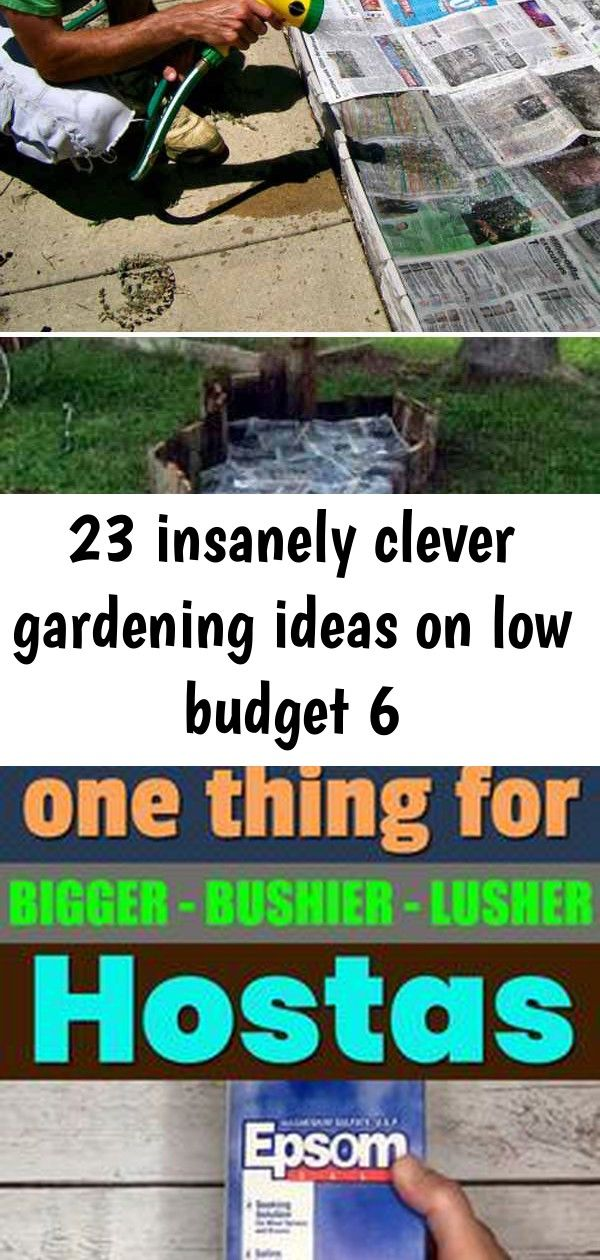 23 insanely clever gardening ideas on low budget 6 Use newspaper and water to stop weeds from growing in your garden bed Learn how to make hostas grow bigger bushier and...
