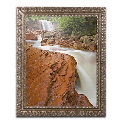 "Trademark Art 'Douglas Falls Chute' by Michael Blanchette Framed Graphic Art Size: 14"" H x 11"" W x 0.5"" D"