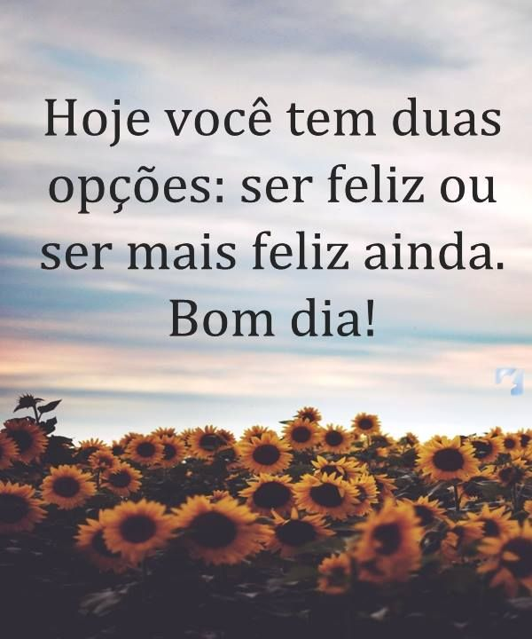 Status De Bom Dia Bons Dias Pinterest Dia Quote Messages E Quotes