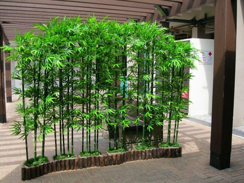 Bambus Im Garten Diy Sichtschutz Fr Die Terrasse Sichtschutz Terrasse Bambus