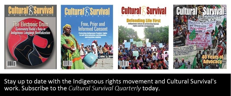 Cultural Survival | Partnering with Indigenous Peoples to Defend their Lands, Languages, and Cultures