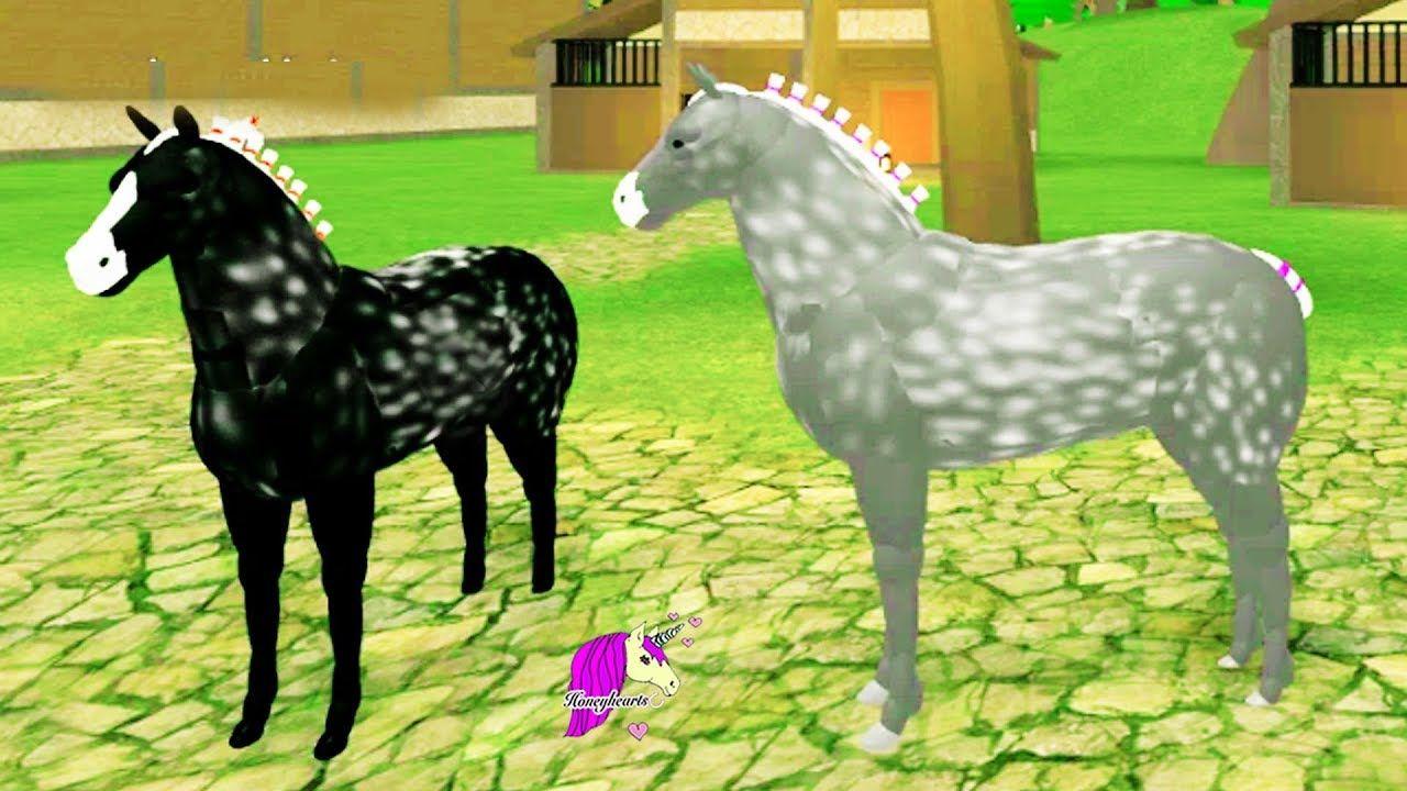 Broken Leg Horse World New Percheron Horses Let S Play Roblox Percheron Horses Horse World Horses
