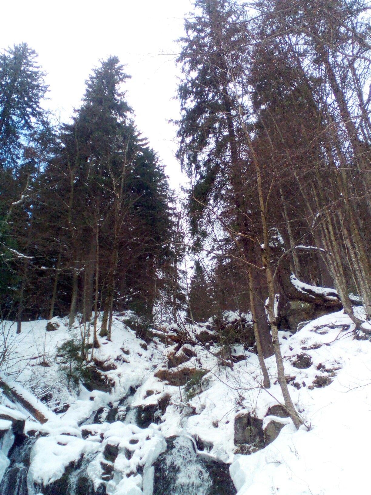 Труфанецький водоспад | Outdoor, Snow