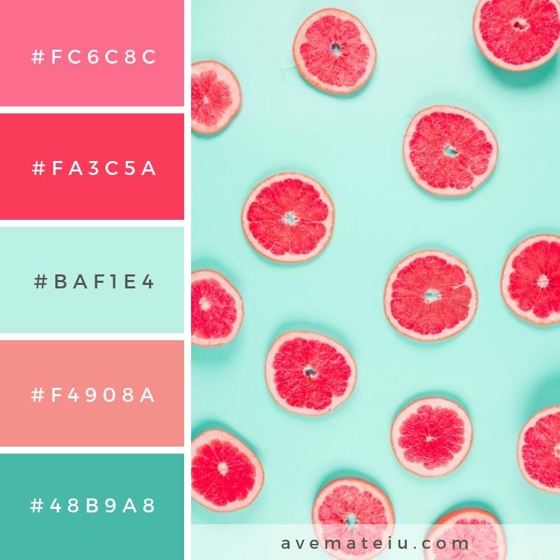 Pattern of grapefruit citrus slices on pastel backdrop. Color Palette #215