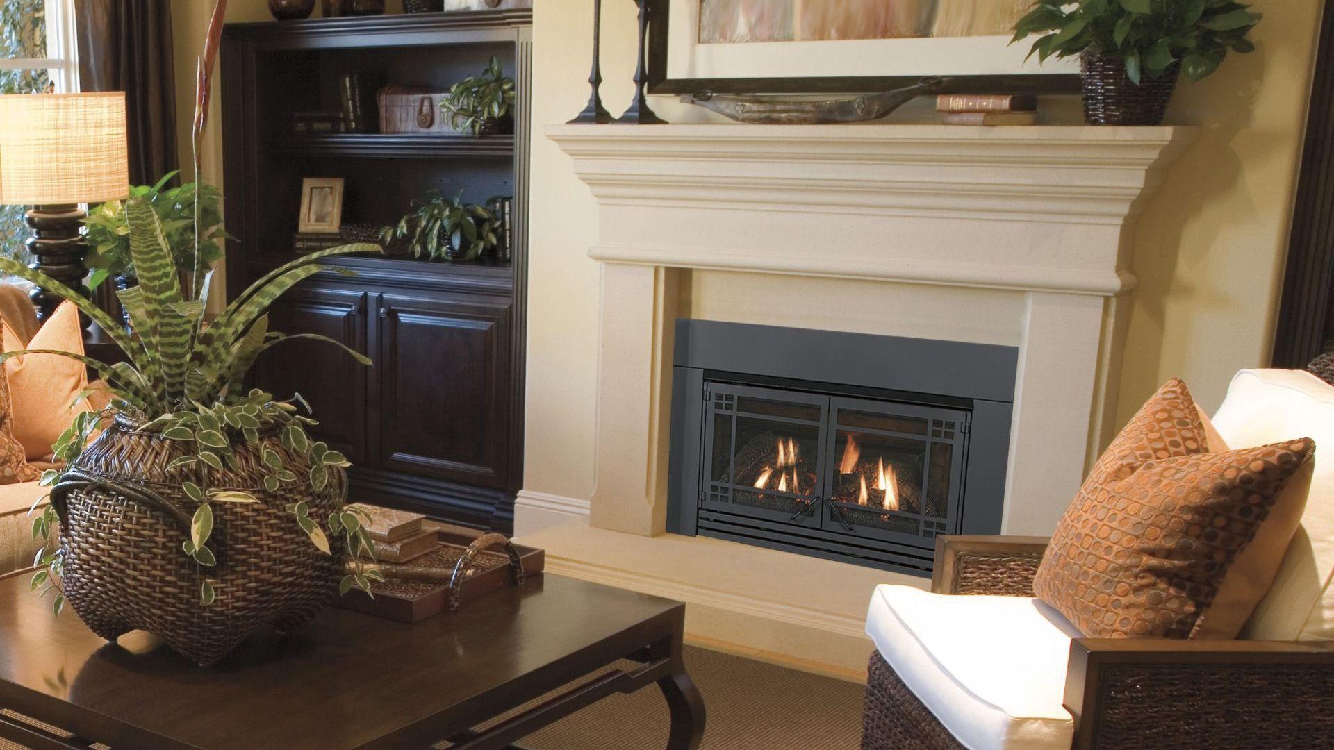 Chaska Insert By Kozy Heat Fireplace Fireplace Bookcase