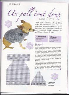 modele manteau pour chien tricot gratuit
