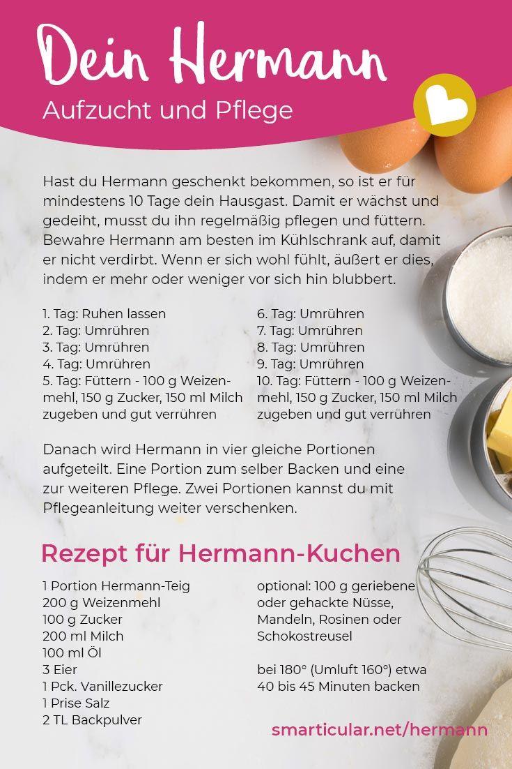 Er ist wieder da: Hermann-Teig selb…