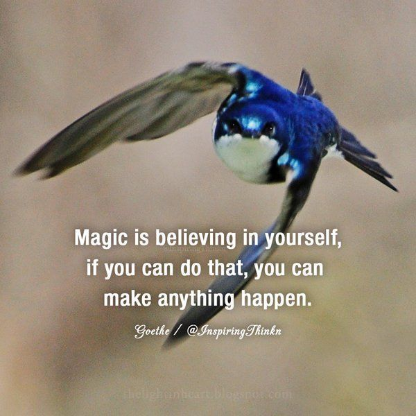 Roy T. Bennett on #chivalryquotes Magic is believing in yourself, if you can do that, you can make anything happen. - Johann Wolfgang von Goethe #gentleman #chivalry #manners #courtesy #integrity #dignity #strength #kindness #love #generosity #humanity #thoughtfulness #calm #patience #maturity #confidence #character #sophistication #class #classy #success #business #dreams #goals #grit #freedom #happiness #zen #karma #faith #believe #trust #chivalryquotes Roy T. Bennett on #chivalryquotes Magic #chivalryquotes