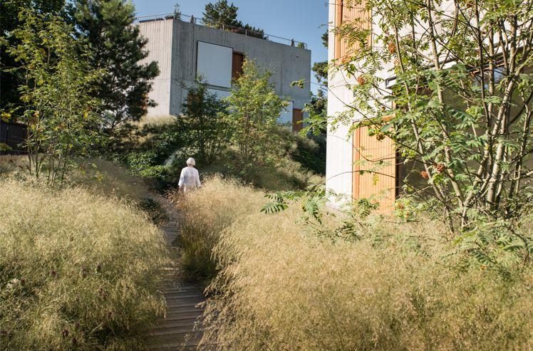 Im Frühjahr 2015 wurde in Riehen ein ungewöhnliches Gartenprojekt fertiggestellt.