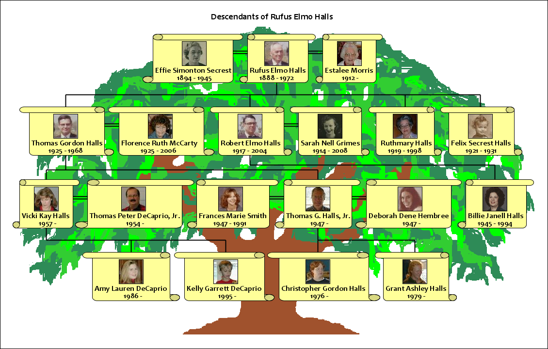 how to make a family tree using your own family information