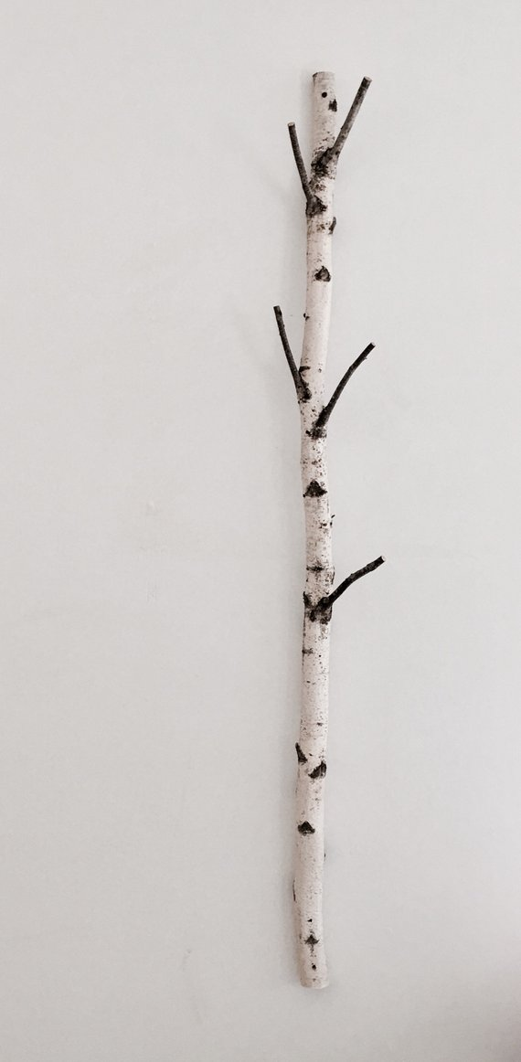 White Birch Tree Coat Rack Birch Branch Birch Pole Birch Log Coat Tree Trunk Coat Rack Wooden Hooks Modern Rustic Wall Decor White Birch Trees Tree Coat Rack Coat Tree