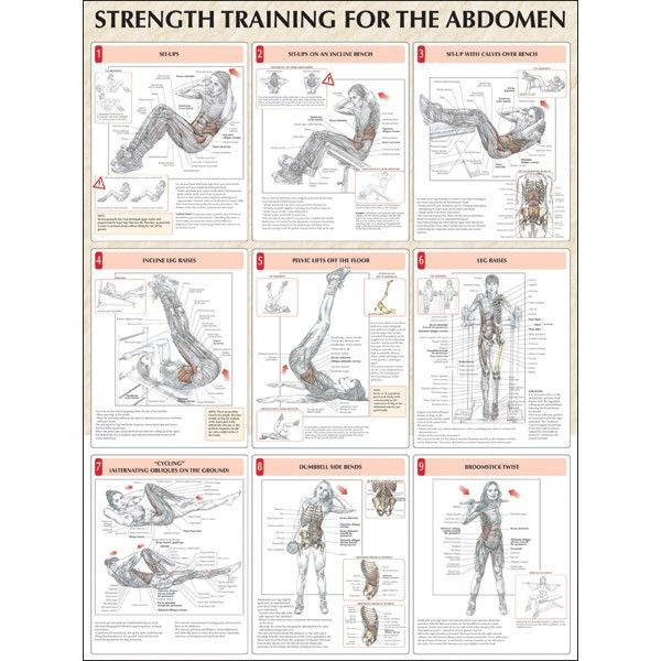 Strength Training Anatomy Workout 1 (Frederic Delavier and Michael Gundill). pdf. 12 Week Program 3 Book Free