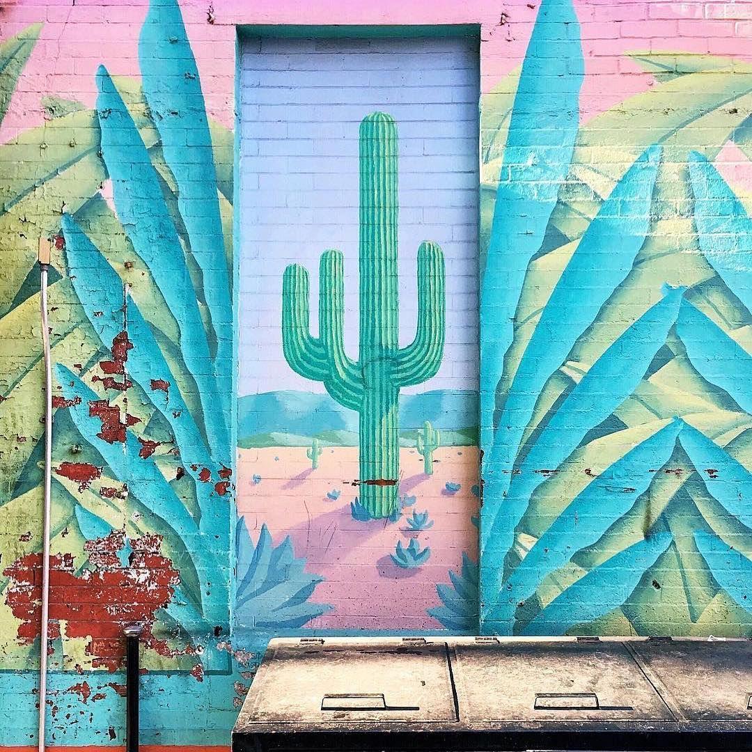 Cactus by bigntoasty cactusmagazine succulent