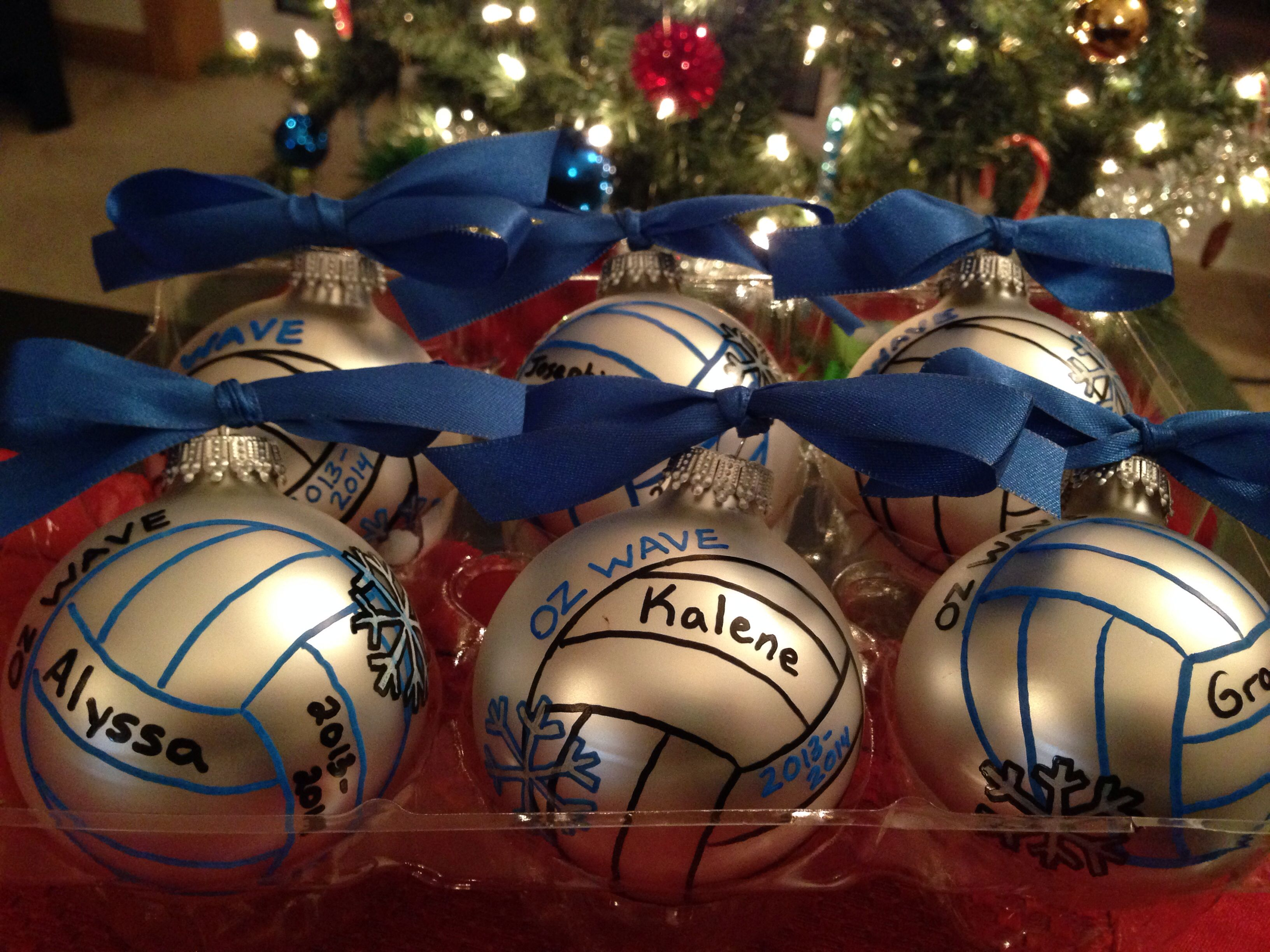 Christmas ornament for volleyball