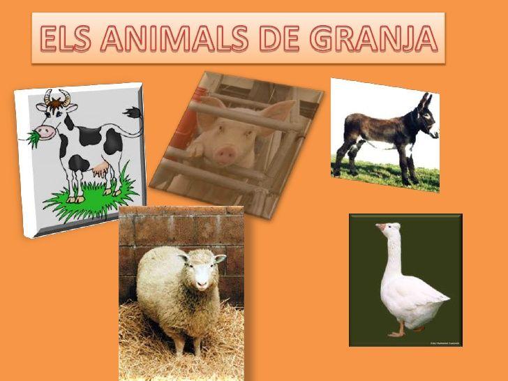 Els Animals De Granja
