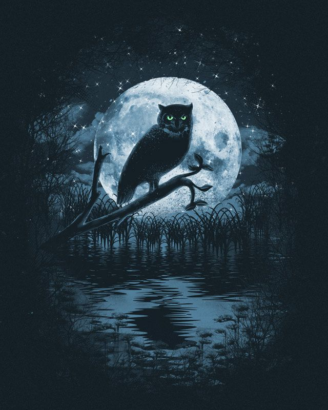 Owl Moon by dandingeroz.deviantart.com on @deviantART | art and ...