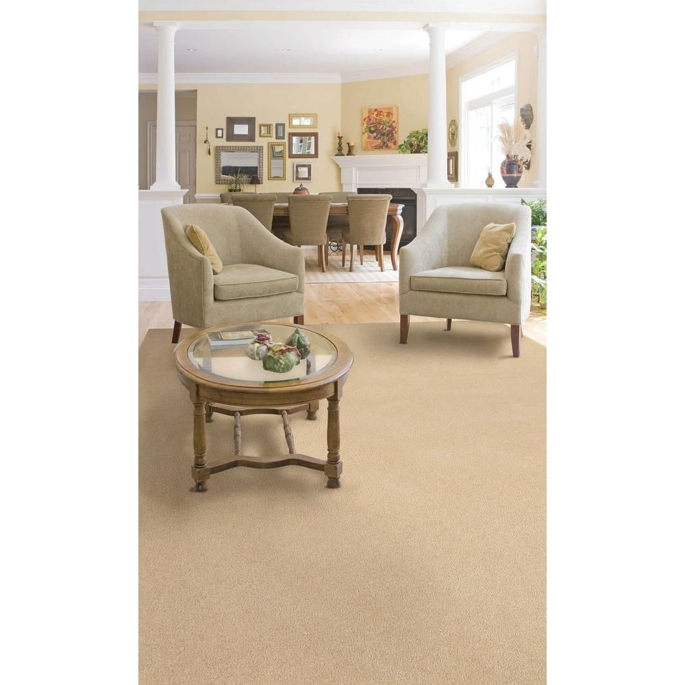 Natco Plush Natural 8 Ft X 12 Ft Bound Carpet Remnant Spn812 The Home Depot Carpet Remnants Home Diy Carpet