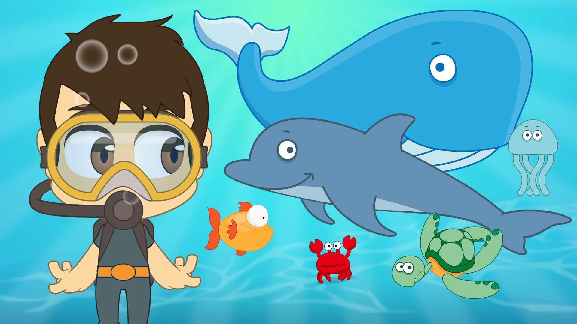 Aquatic Animals In French For Kids