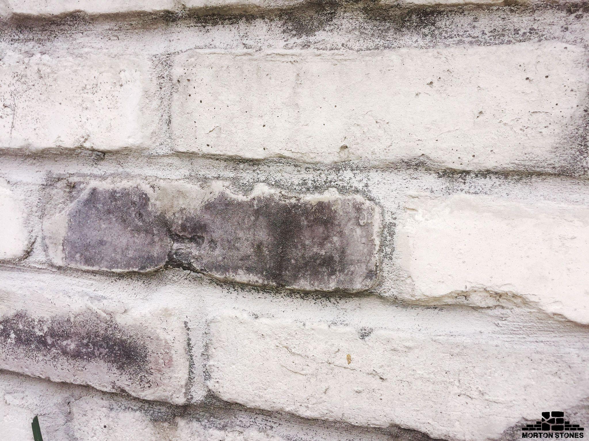 The Whitewashed Brick Accent Wall Adds An Elegant Rustic Vibe Mortonstones Brick Tiles Rustic Thinbrick Brick Veneer Brick Decor White Brick Backsplash
