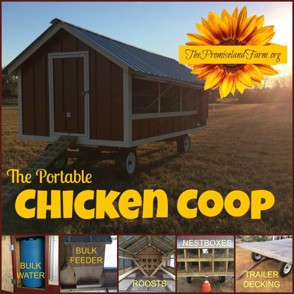 Portable Chicken Coop Video Tour (How We Built It) | Homesteading ...