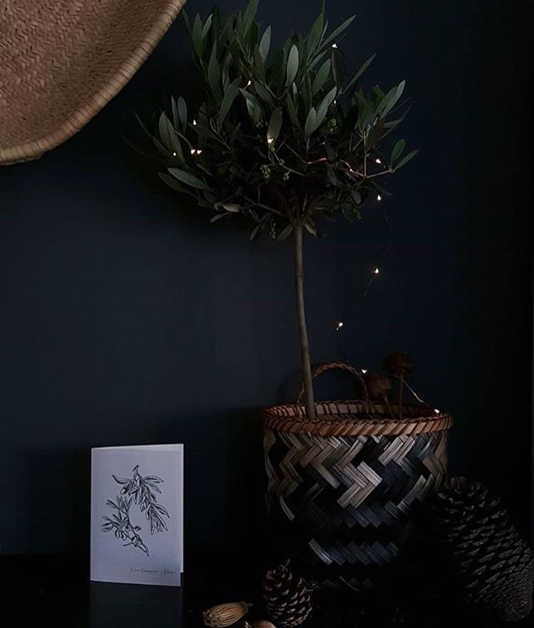 It may still feel like summer, but we're busy planning our Autumn, Winter & Christmas photo shoots! This dark & moody photo from @littlegreenshed offers a hint of the look we'll be going for! #darkwalls #roseandgreymyway