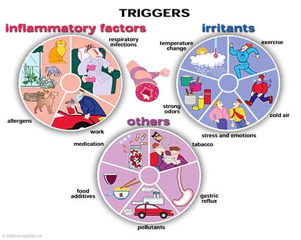 Reactive Airway Disease Natural Treatment