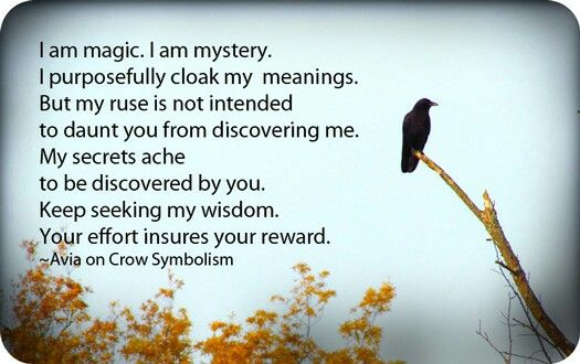 Avia on Crow symbolism  One of my favorites, actually