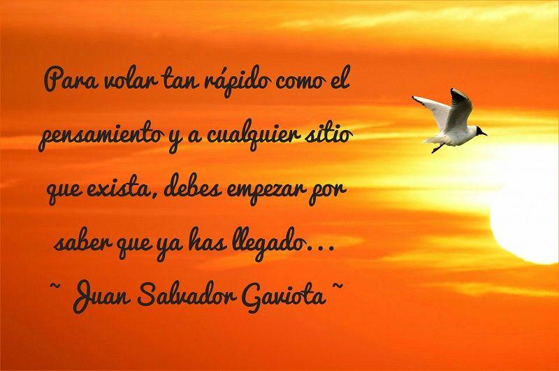 Juan Salvador Gaviota Juan Salvador Gaviota Frases Juan