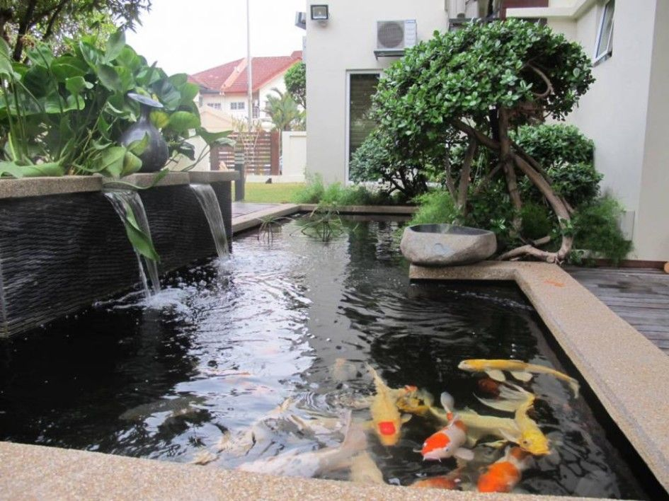 Garden Design Koi Fish Pond Design L Shaped Waterfall Feature In Backyard Beautiful Garden Feel Fresh With Fish Pond Design Fish Pond Gardens Koi Pond Design