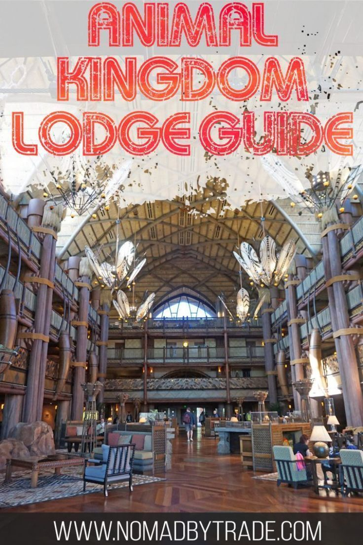 Disney's Animal Kingdom Lodge Tips and Review #animalkingdom