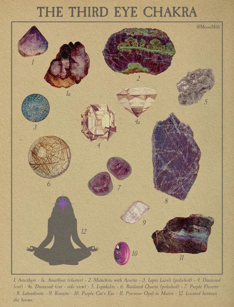 The Chakras - Vintage Scientific Series Print Pack