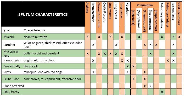 Sputum Characteristics  Medicine    Respiratory