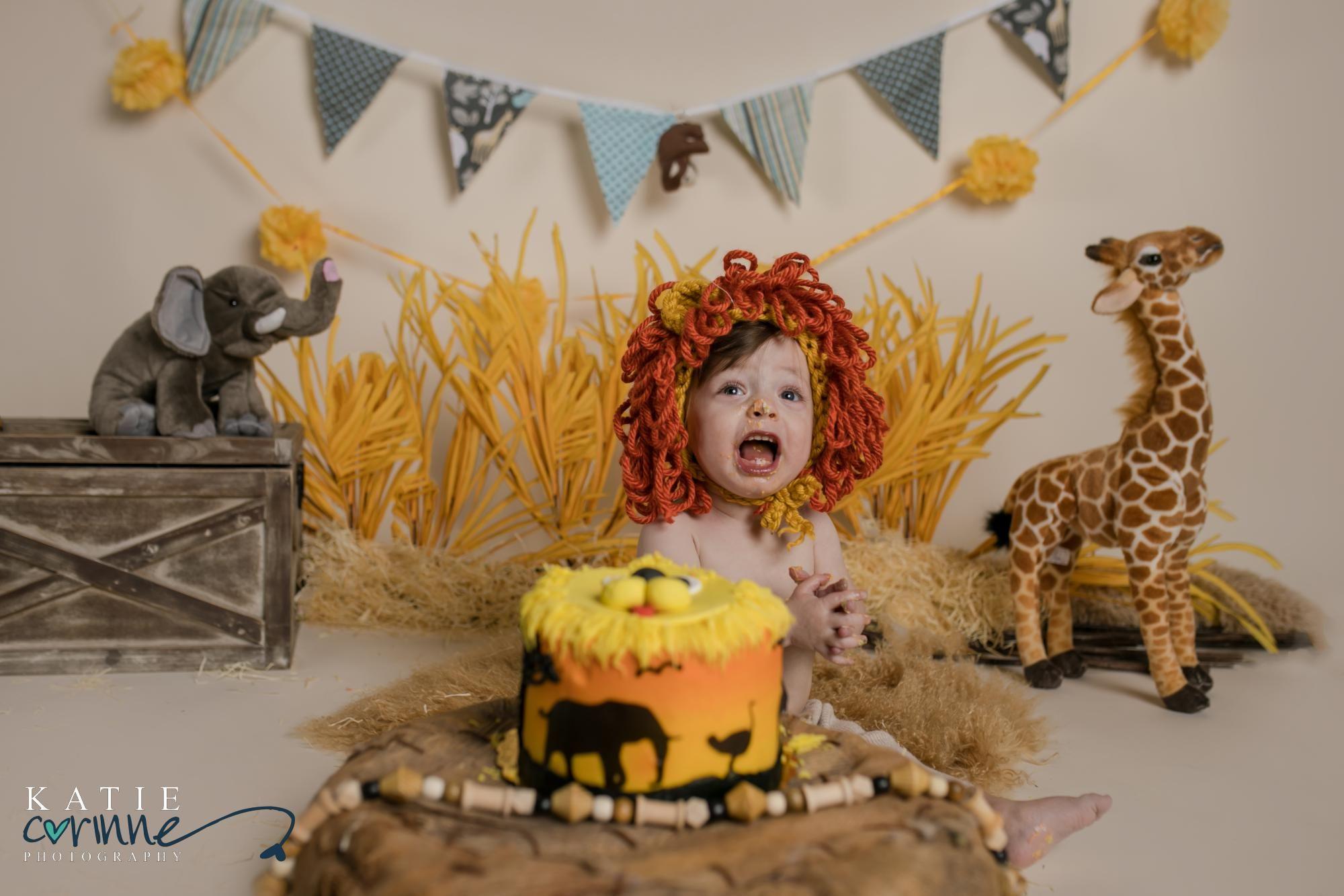Safari Cake Smash Cake Smash Theme Lion King Birthday Cake Smash