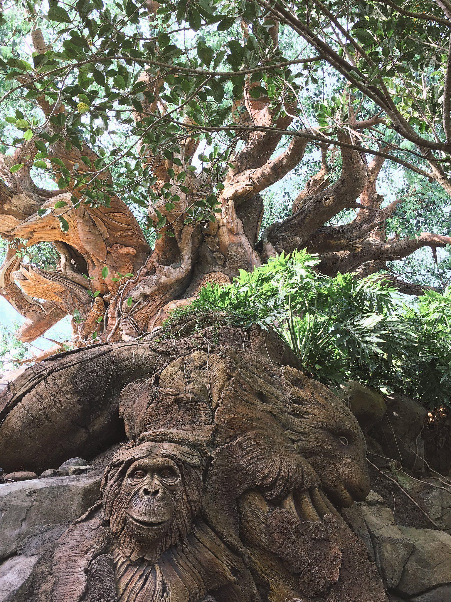 """""""真ん中に大きな木があってその造形が印象的でした。無数の動物たちから恐竜から古代生物まで、木のあらゆるところに埋め込まれてて… 3枚めは木の内部で4枚めはライトアップです"""""""