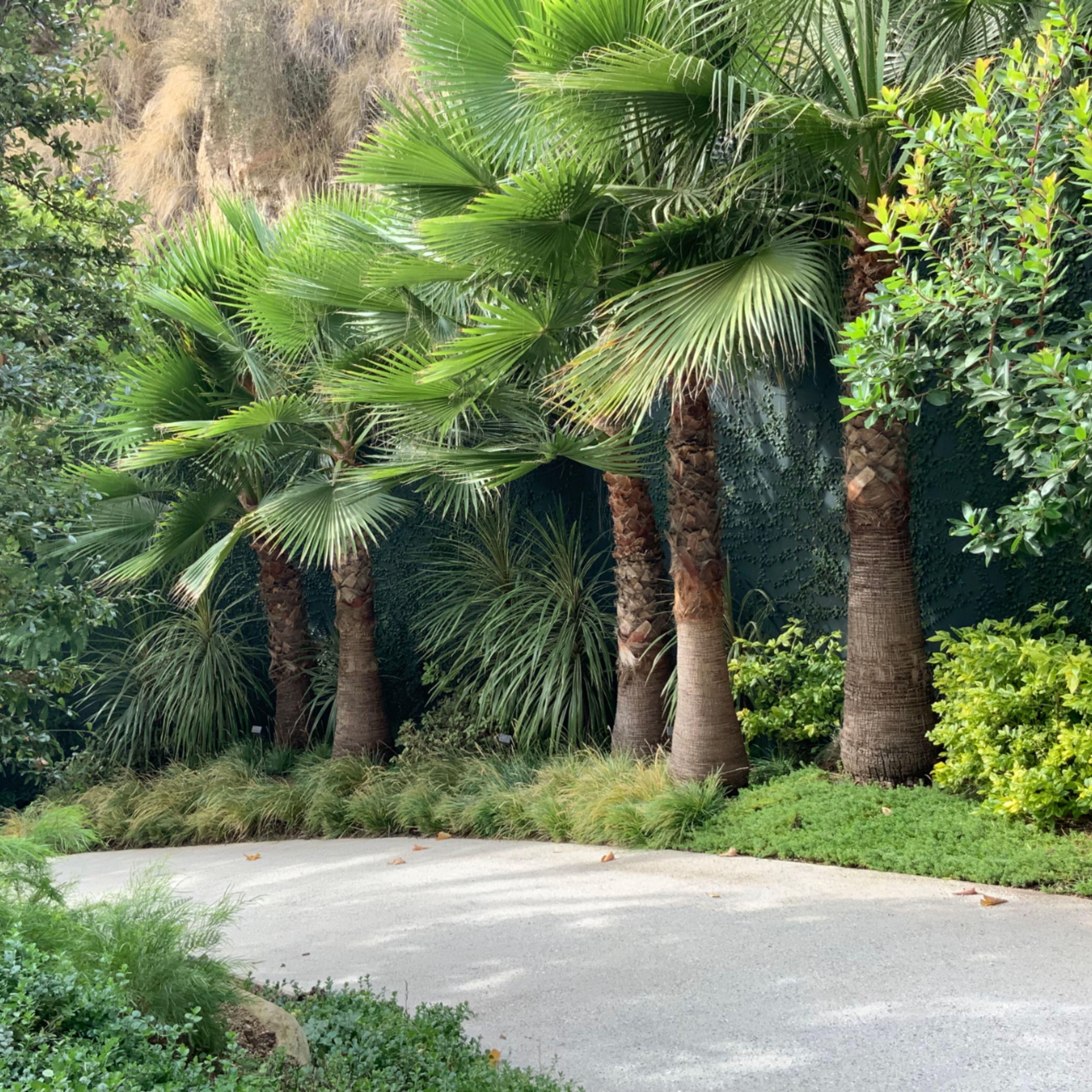 Franklin Garden Paths In 2020 Concrete Path Garden Paths Hardscape